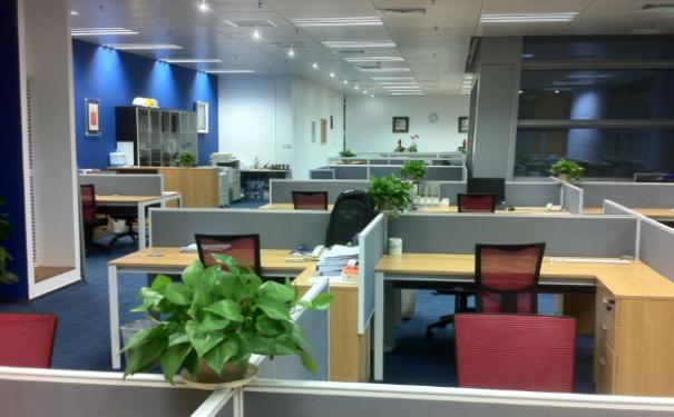 新办公室风水应该如何布局