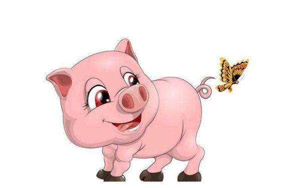 专属于属猪人招财吉祥物