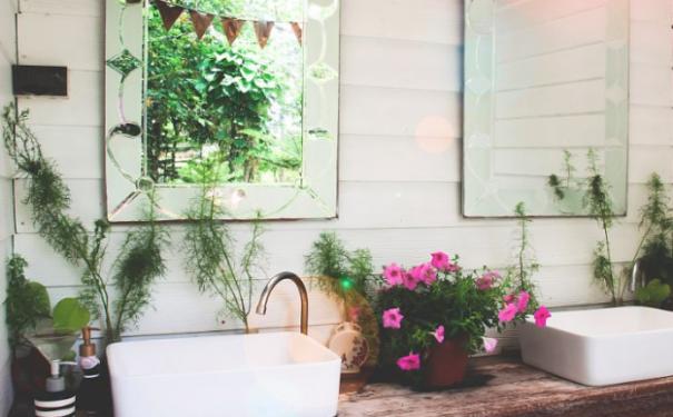 利用卫生间植物风水招财旺运