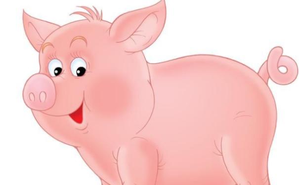 属猪人职场风水